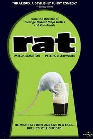 Este Rato É Um Espanto