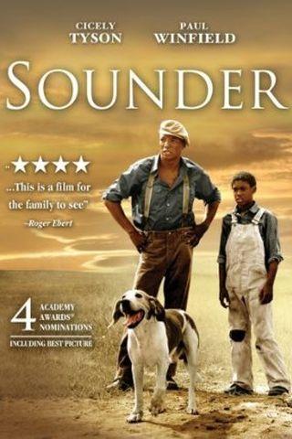Sounder - Lágrimas de Esperança