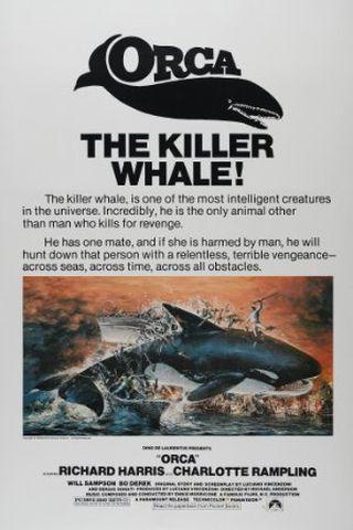 Orca - A Baleia Assassina