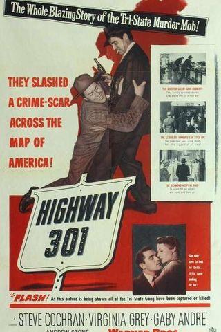 Estrada 301