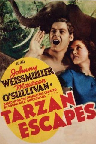 A Fuga de Tarzan
