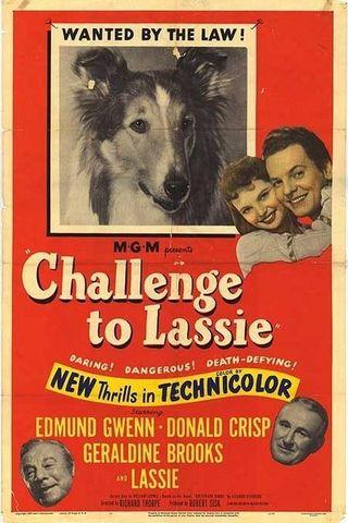 O Desafio de Lassie