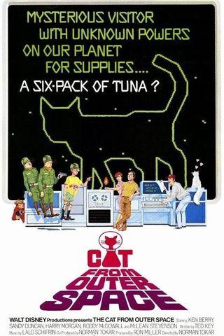 O Gato do Espaço