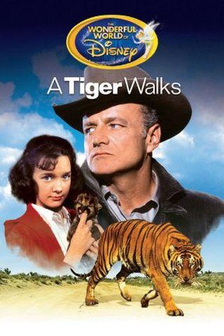 O Passo do Tigre