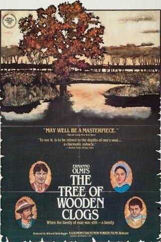A Árvore dos Tamancos