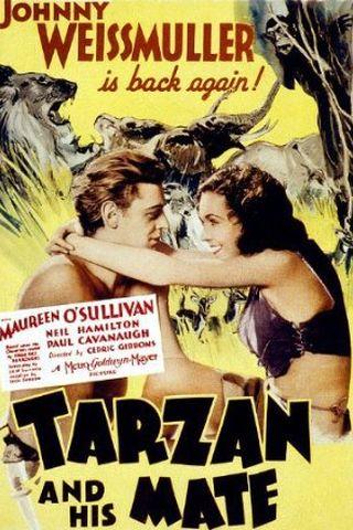 Tarzan e Sua Companheira