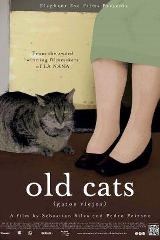 Gatos Viejos