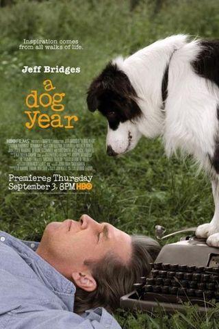 Um Ano do Cão