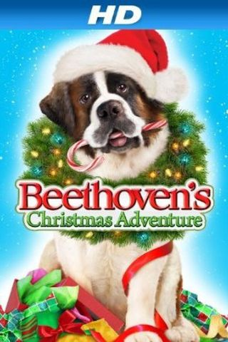 Beethoven - Aventura de Natal