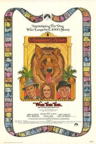 Won Ton Ton, o Cachorro Que Salvou Hollywood