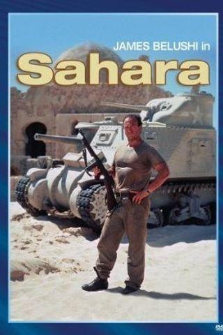 Sahara - Em Busca da Sobrevivência