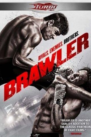 Brawler