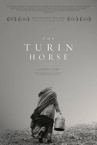 O Cavalo de Turin