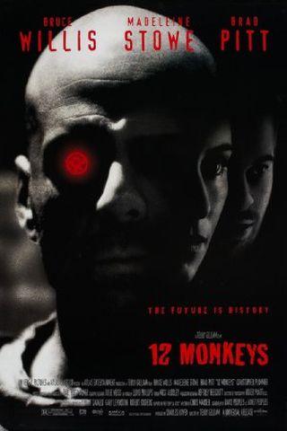 Os 12 Macacos