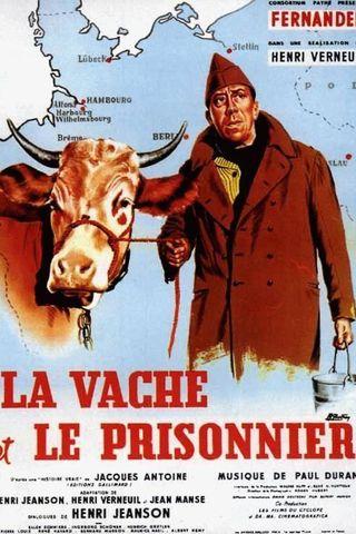 A Vaca e o Prisioneiro