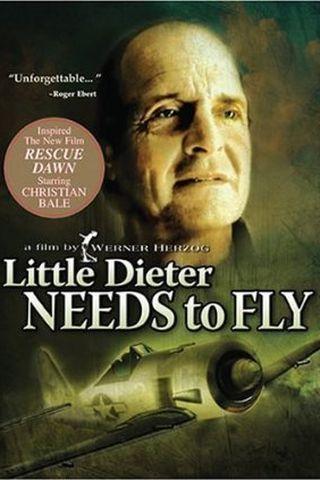 Pequeno Dieter Precisa Voar