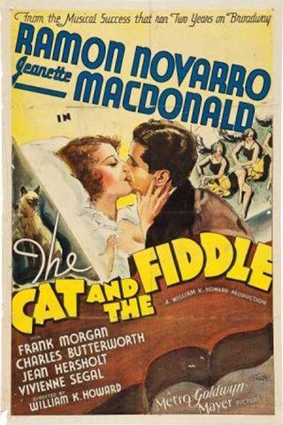 O Gato e o Violino