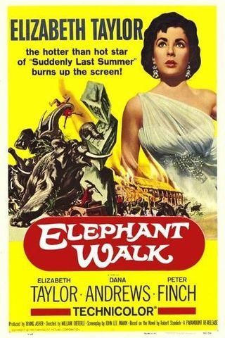 No Caminho dos Elefantes